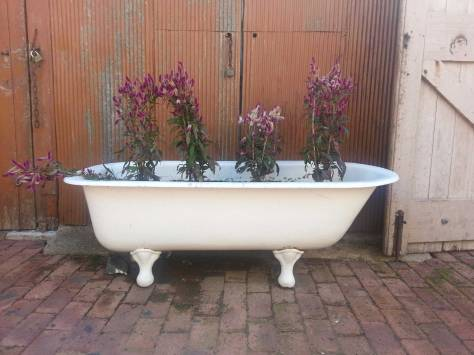 Old bath at Cork St Cafe, photo by Tracey Benson