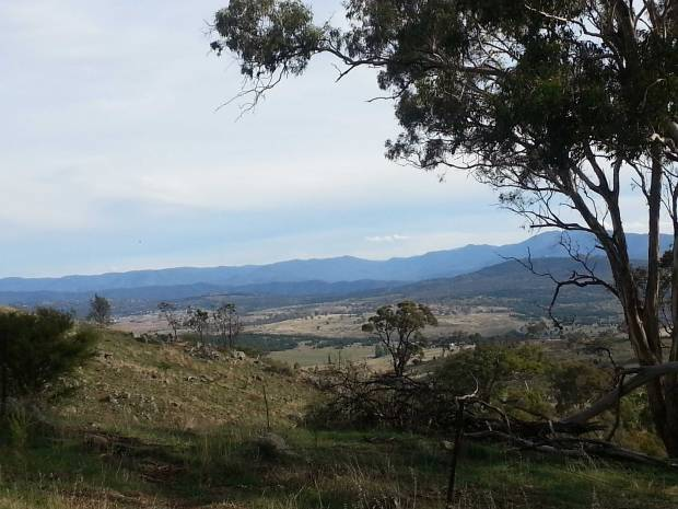 Mt Painter views, photo by Tracey Benson
