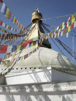 Cover Image, Boudhanath