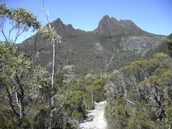 Cover image Cradle Mountain
