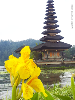 Flower and temple.