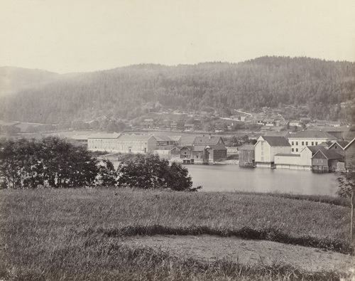 Photo credit: Henry Rosling c 1860