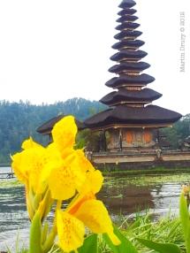 North Bali 5