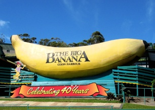 Big Banana - from Wikipedia Commons