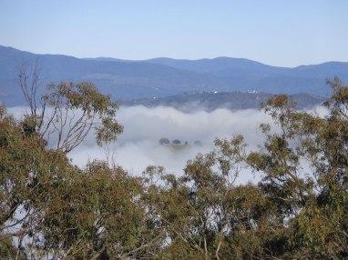 Canberra Mist 5