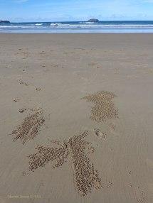 Emerald Beach 4
