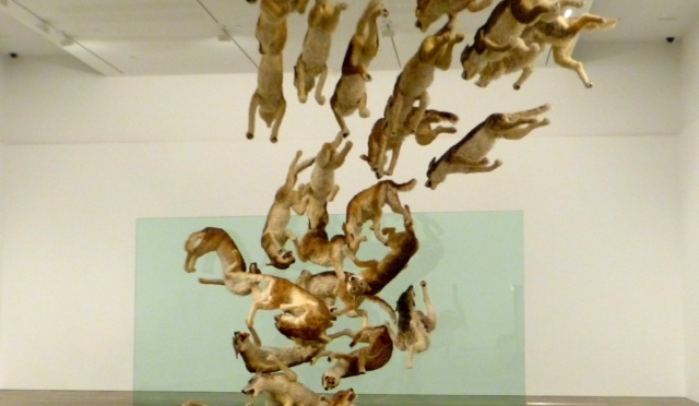 Cai Guo-Qiang: Falling Back to Earth, Image Credit: Garry Benson