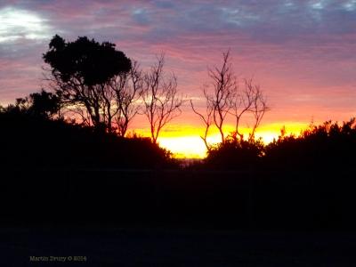 Korora Sunrise 1