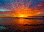 Korora Sunrise 12