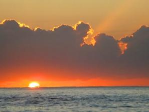 Korora Sunrise Two - 18