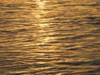 Korora Sunrise Two - 35