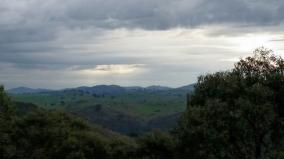 Brindabella Hills Vineyard © Tracey Benson 2014