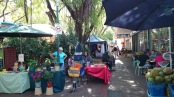 Nightcliff Markets © Tracey Benson 2014