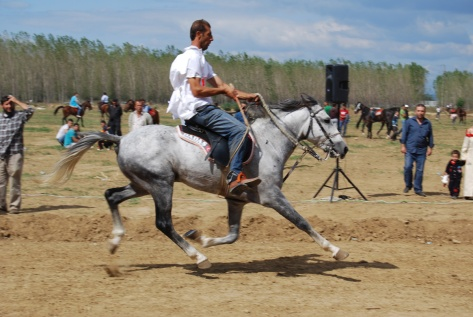 Rahvan racing, all 4 feet off the ground, Bursa 2009.