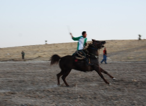 Cirit; the hard halt immediately before the throw, Kediyünü village, (Uşak), 2009.