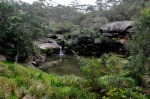 Mermaid Pool. Image Credit : http://thegreenmanly.blogspot.com.au