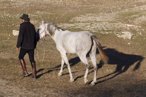 The Pleasures of Travel with Horses, 1: Going for an evening stroll.