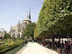 Notre Dame 19