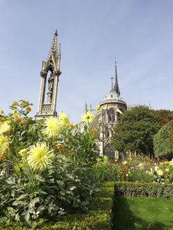 Notre Dame 20