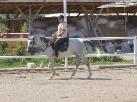 16-August, Juno with Zorlu in the ring