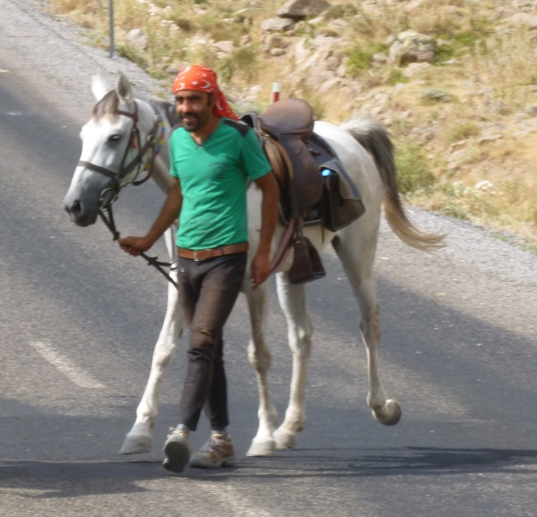 20 August: Ahmet (Can Can) and Zorlu ready for a walk, en route to Altunhisar