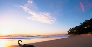 Image credit: http://www.breakersmollymook.com.au/?/attractions-and-activities/mollymook-beach