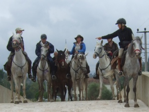 Image of 2014 Evliya Riders