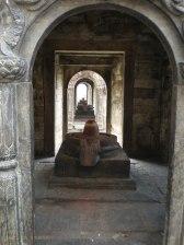 Image of around Shree Pashupatinath Temple