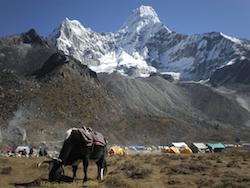 Ama Dablam Trek, Nepal – A Photo Essay