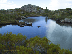 Walls of Jerusalem, Tasmania – A Photo Essay
